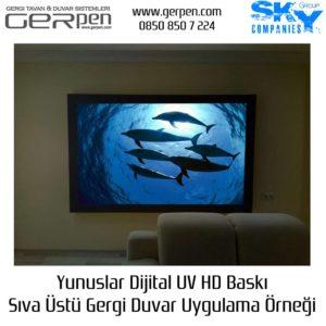 Gergi Duvar Yunuslar 100x200cm Uygulaması