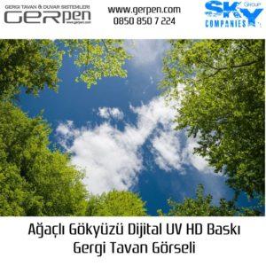 Hazır Gergi Tavan Ağaçlı Gökyüzü 75x100cm