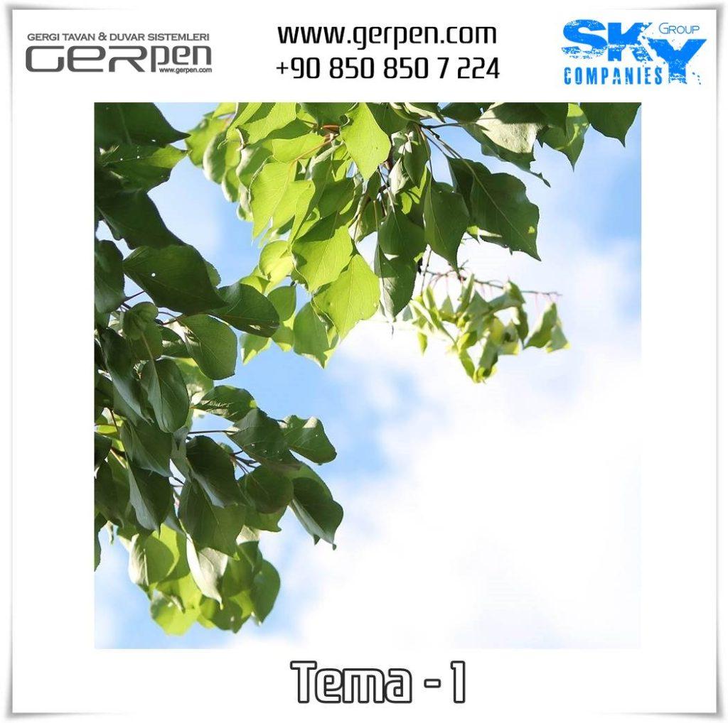Gergi Tavan Ağaçlı Gökyüzü Tema 1