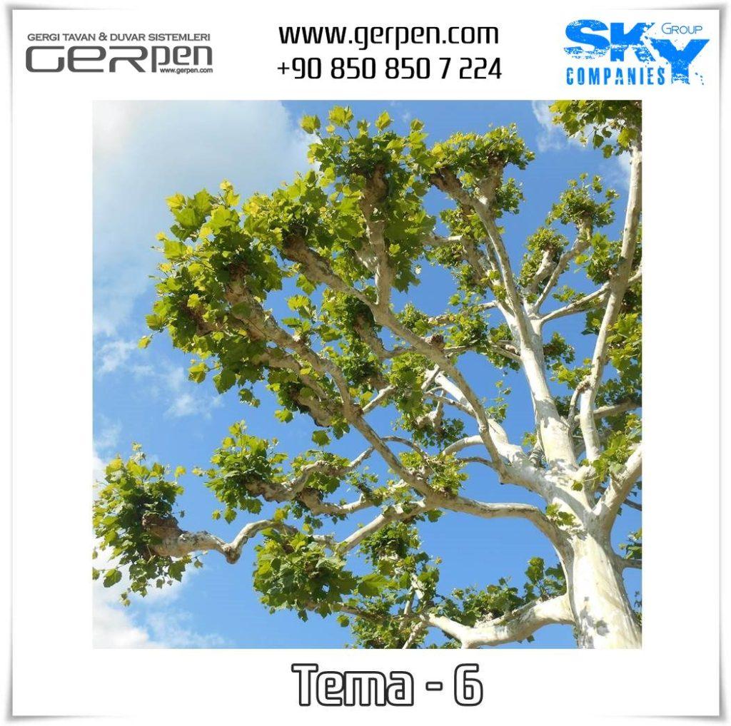Gergi Tavan Ağaçlı Gökyüzü Tema 6
